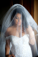 Beautiful Bride and Veil with Window light